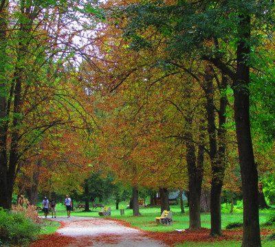 разходка в парка
